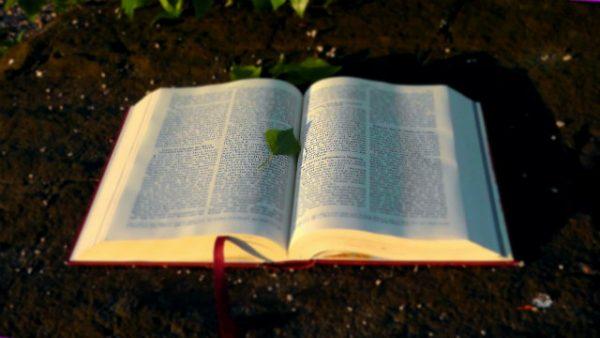 神的作工不能超出聖經嗎
